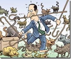 herding cats II