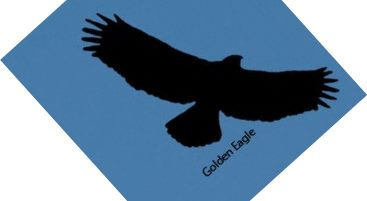 Golden Eagle Silhouette