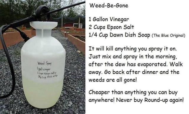 Weed-be-gone