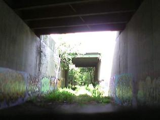 RailTrail Route 95 Tunnel II